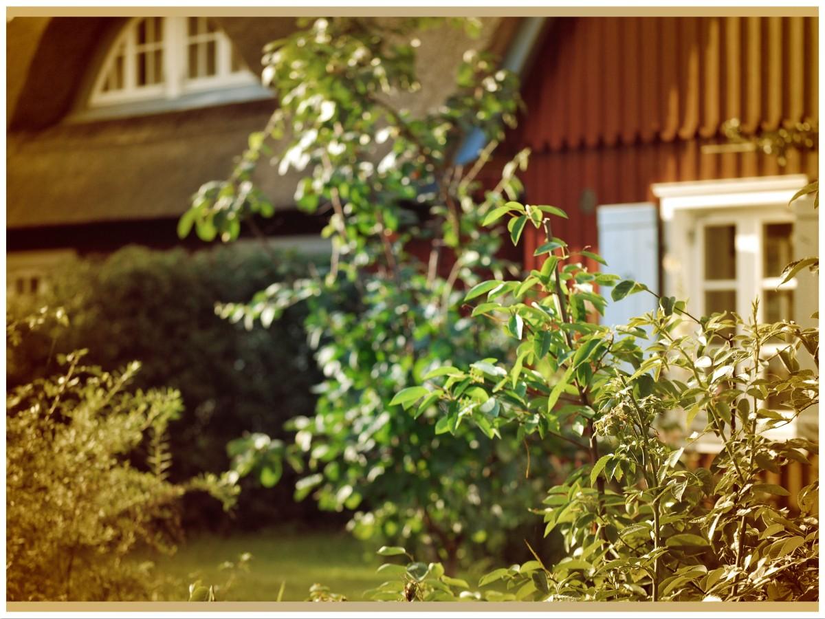 Die ersten Kita-Ferien oder wie Airbnb uns den Sommerurlaub gerettet hat