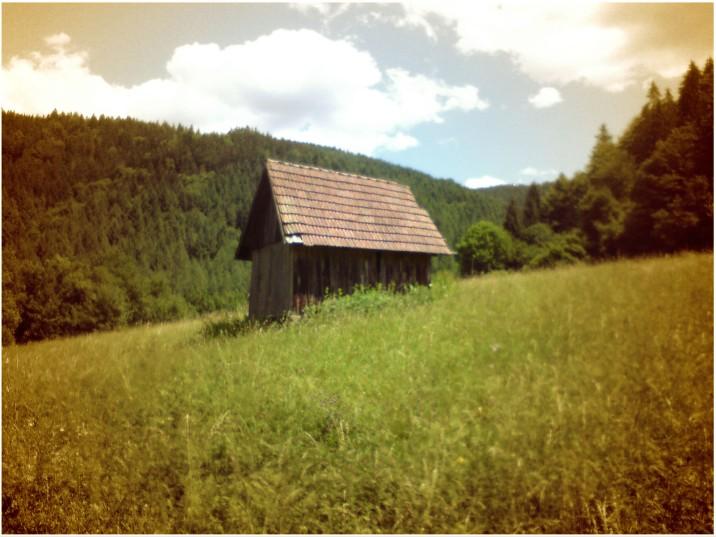 Allgäu oder Schwarzwald? - Heuhüttentäler bei Forbach
