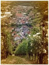 Tour de Murg – Radwandern mit Kind imNordschwarzwald