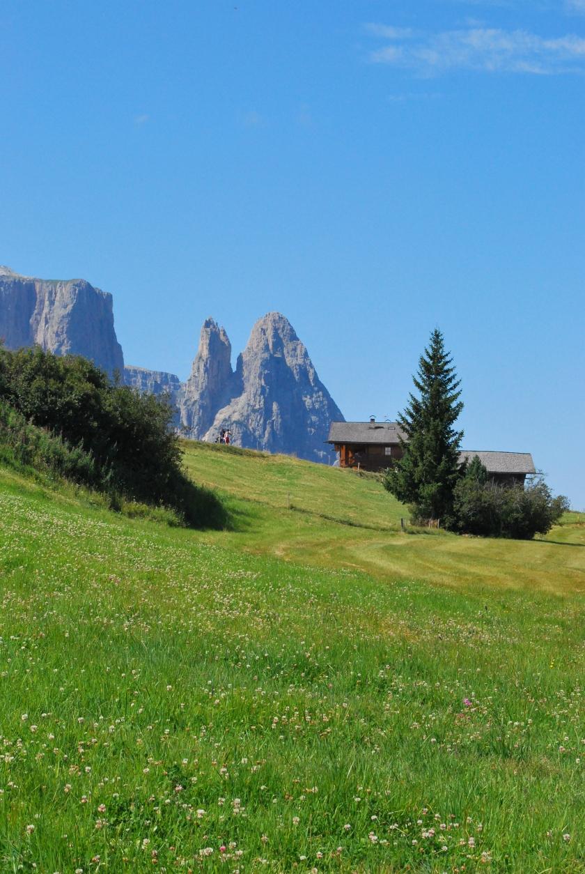 Bergsommer Seiser Alm_Schlern