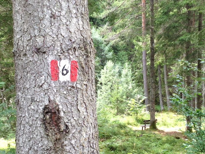 Seis_Oswald-von-Wolkenstein Weg