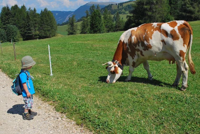 Urlaub Bauernhof_Südtirol_Tiere