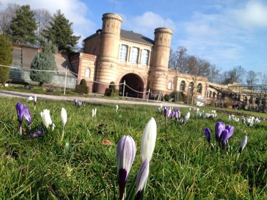 Frühlingsbeginn im Schlosspark